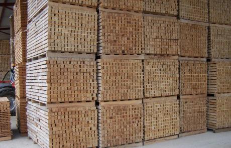 International wood export